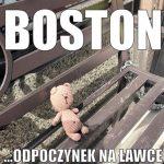 Вязание медведя путешественника в Бостоне
