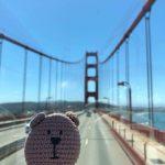 Вязание крючком медведя в Сан-Франциско