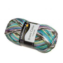 Bravo Color 02083 kolorowa włóczka niemieckiej firmy Schachenmayr